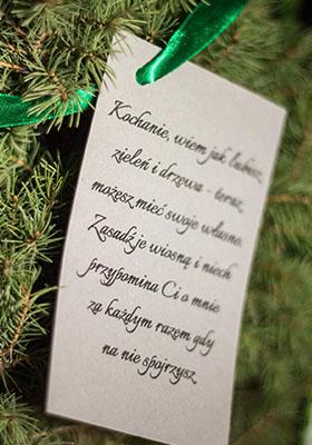 dlaczego drzewko na prezent 2