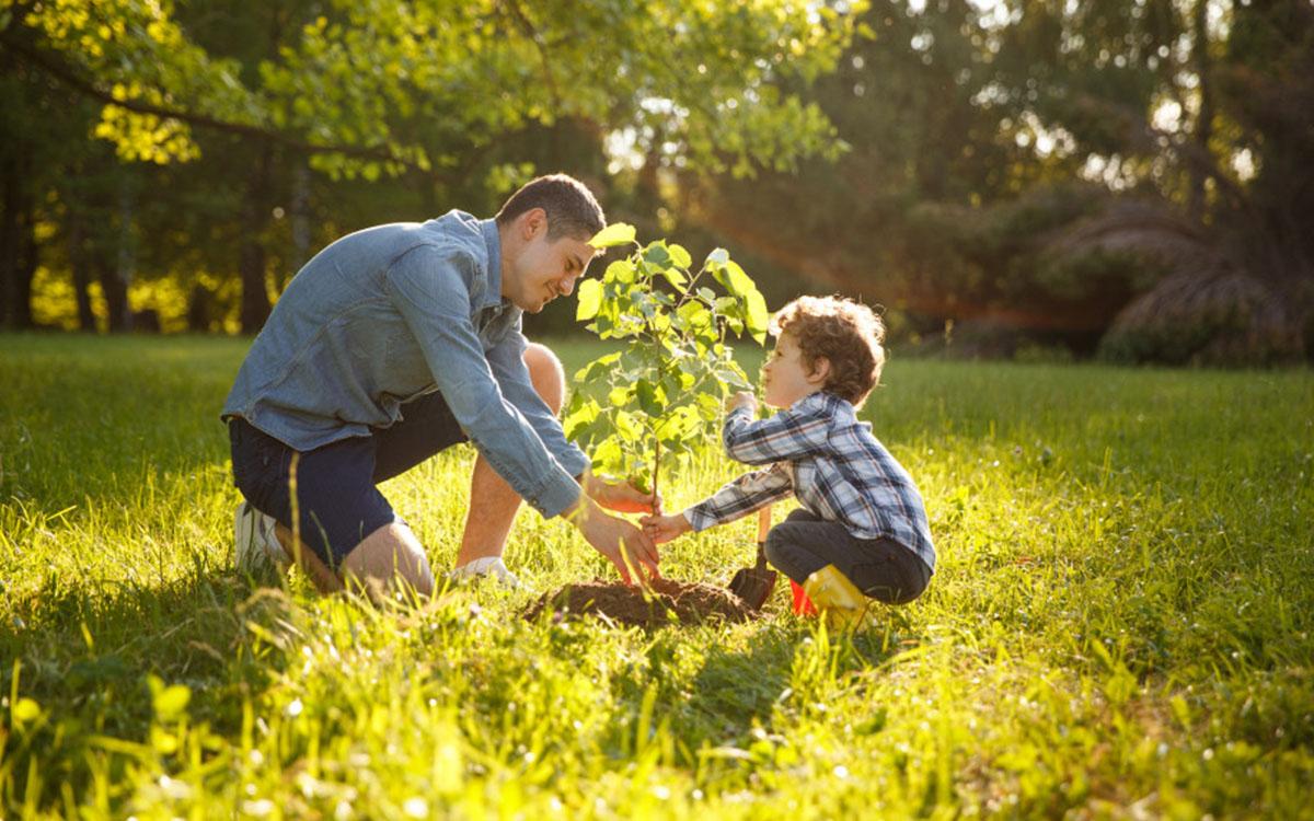 Wiosna - czas wzmożonych prac w ogrodzie 1