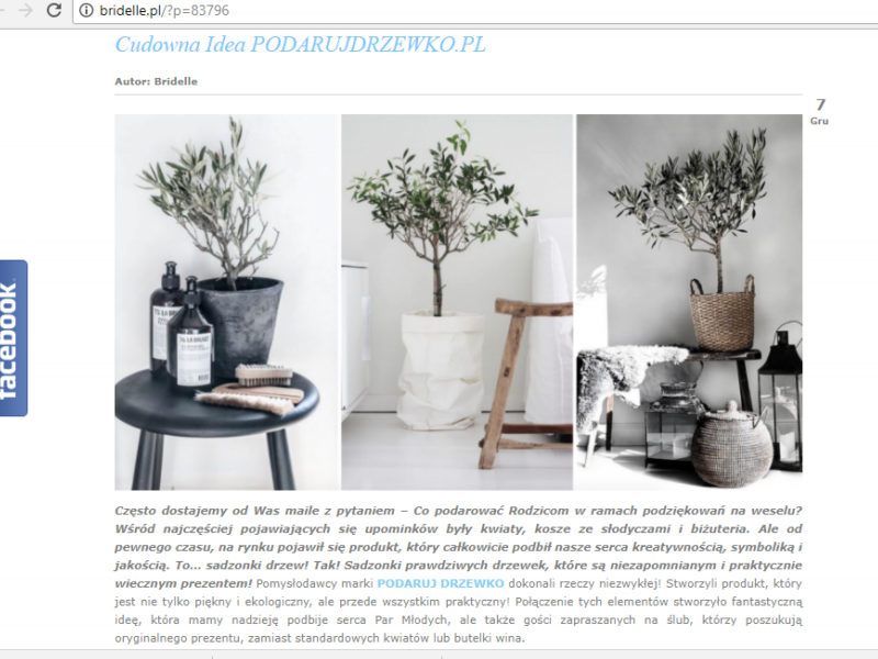Podarujdrzewko.pl na blogu Bridelle 2
